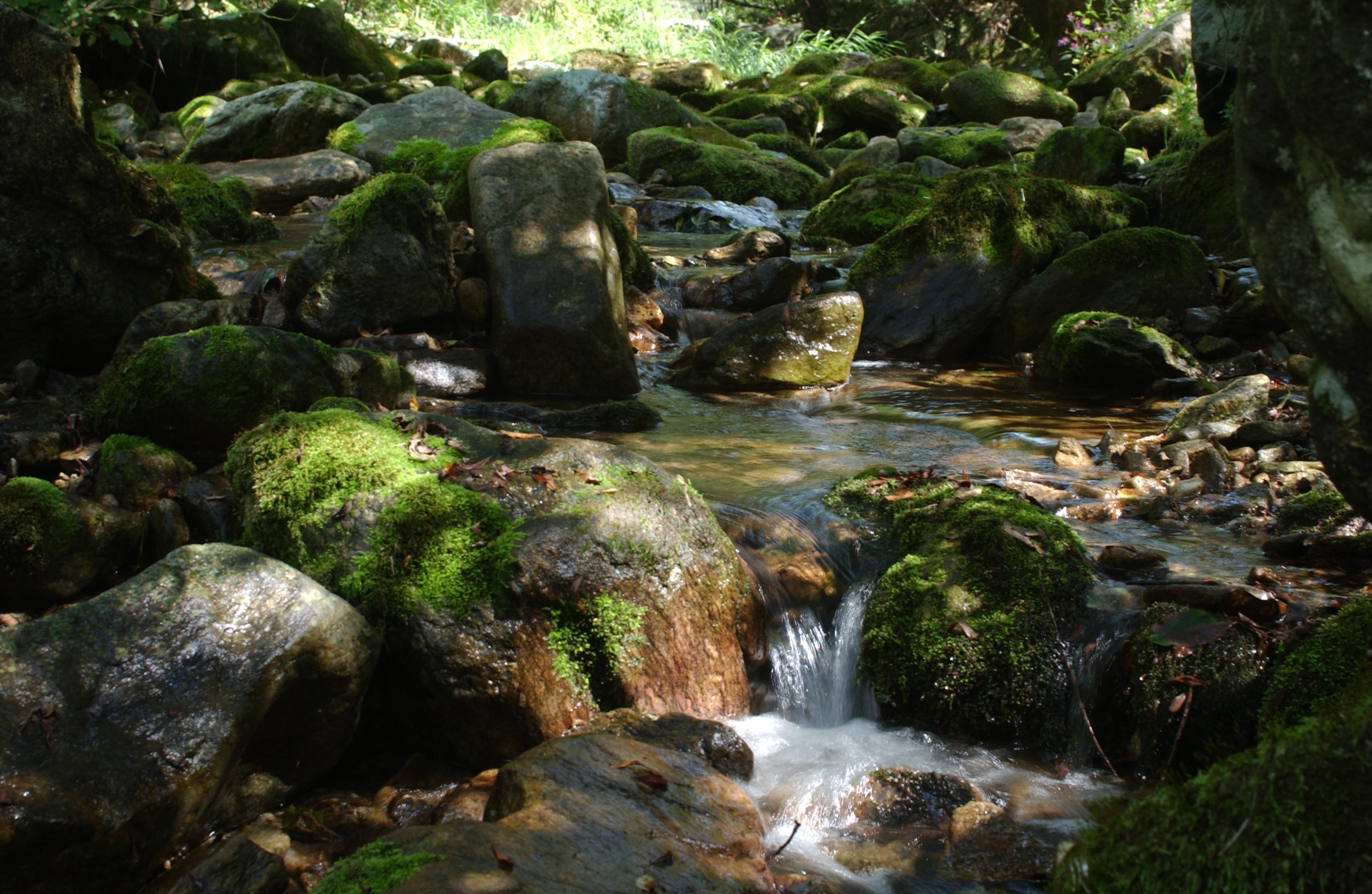 8 계곡 물.JPG