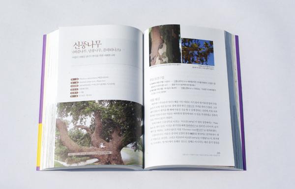 1성서식물 내용 (4)(600).jpg